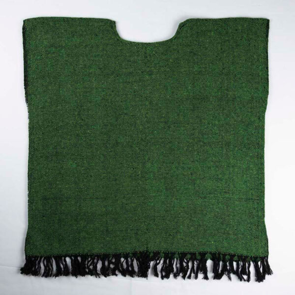 traditional-handwoven -green-mexican-huipil-blouses-back view 073