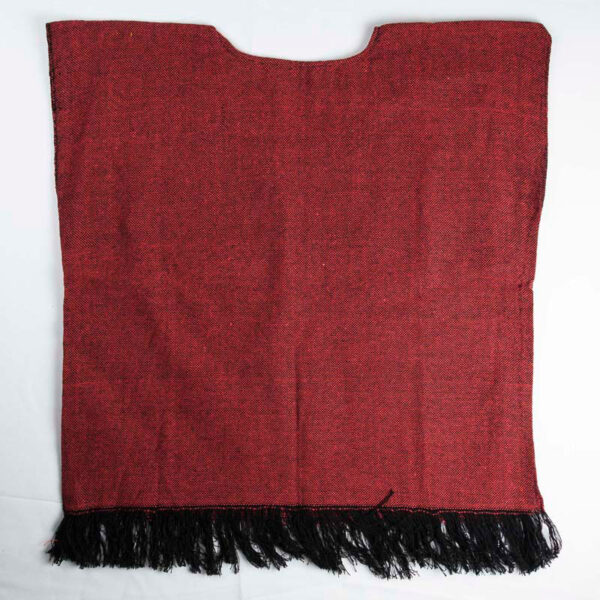 traditional-handwoven -red-mexican-huipil-blouses-back-view